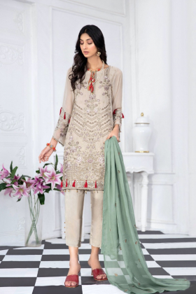 3 Piece Nirvsh luxury chiffon embroidered suit in beige
