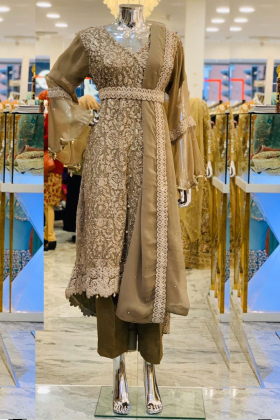 Brown modern punjabi style luxury trouser suit