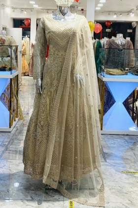 Beautiful beige net embroidered long gown