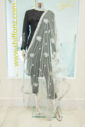 Beautiful net silver dupatta