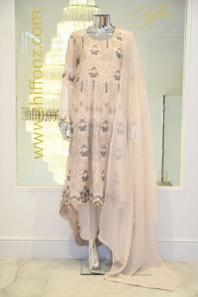 Light pink long back tail embroidered dress