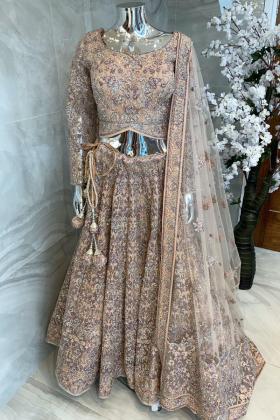 3 Piece beige luxury embroidered net lengha choli